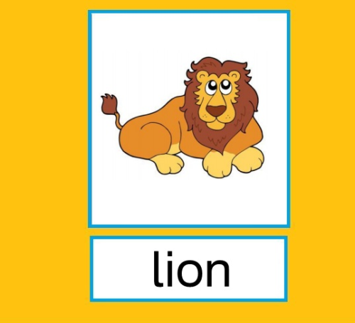 "Flashcards Zootiere ""Zoo animals"""